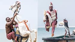 Social media abuzz as Tobi Bakre's photo shoot with a horse sparks outrage, he reacts