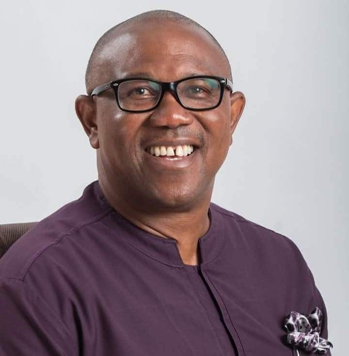 Former governor of Anambra state, Peter Obi