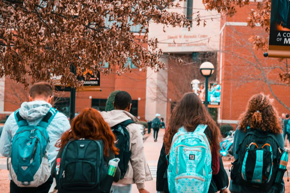 What's the difference between college and university?