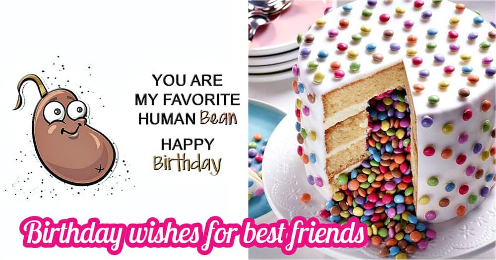 Best Cute Birthday Wishes For Friend