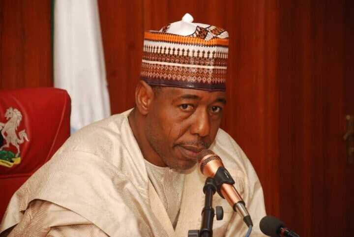 Karantsaye ga tsaro a gidan gwamnatin Borno: Shugaban wata NGO ya shiga hannun hukuma