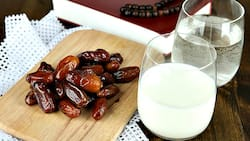 Benefits of dates and milk you have to know