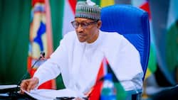 Good news as FG reveals when teachers' salary increment approved by Buhari will take off
