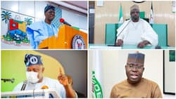 List of notable Nigerians calling for Tinubu presidency in 2023