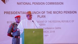 NPC makes stunning revelation, says 331,000 out-of-job Nigerians withdrew from pension savings
