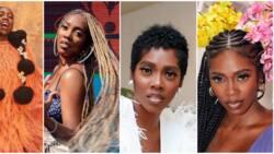 Many shades of Tiwa Savage: 7 beautiful photos show music diva's favourite hairstyles