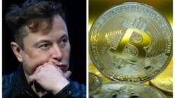 Elon Musk ya rasa N5trn dalilin Bitcon ya sauka daga matsayin wanda ya fi kowa kudi a duniya