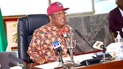 Several feared killed as herdsmen reportedly attack Ebonyi communities