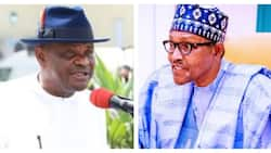 Insecurity: You can't shift your duty to states - Fiery governor replies Buhari