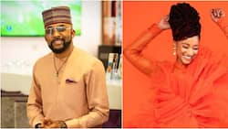 Slide into my DM - Adesua says as her husband Banky W admires her photo