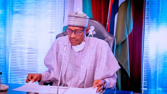 Why Nigeria can't jump into development, Buhari shares crucial details