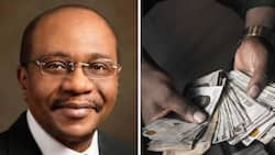 CBN reveals 7,057 youths received N3billion to help their business, with a promise for more