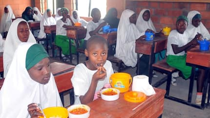 FG begins screening of 750 food vendors for school feeding programme