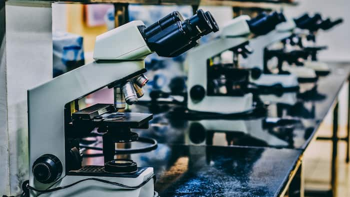 Learn the horizons of the specialists in Science Laboratory Technology in Nigeria