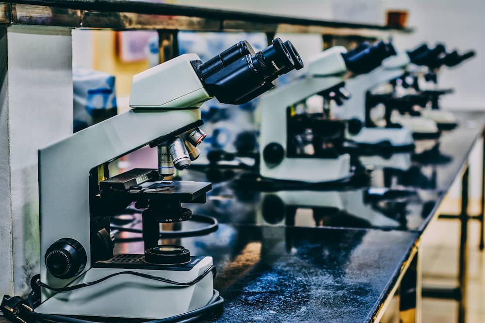 Science Laboratory Technology