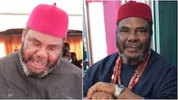 Homosexuality is caused by reincarnation - Pete Edochie