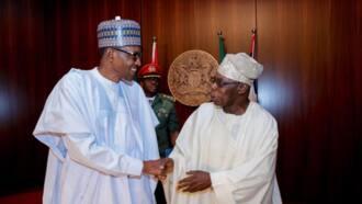 Obasanjo: Muddin aka yi zaben gaskiya Buhari zai koma kauyensu Daura