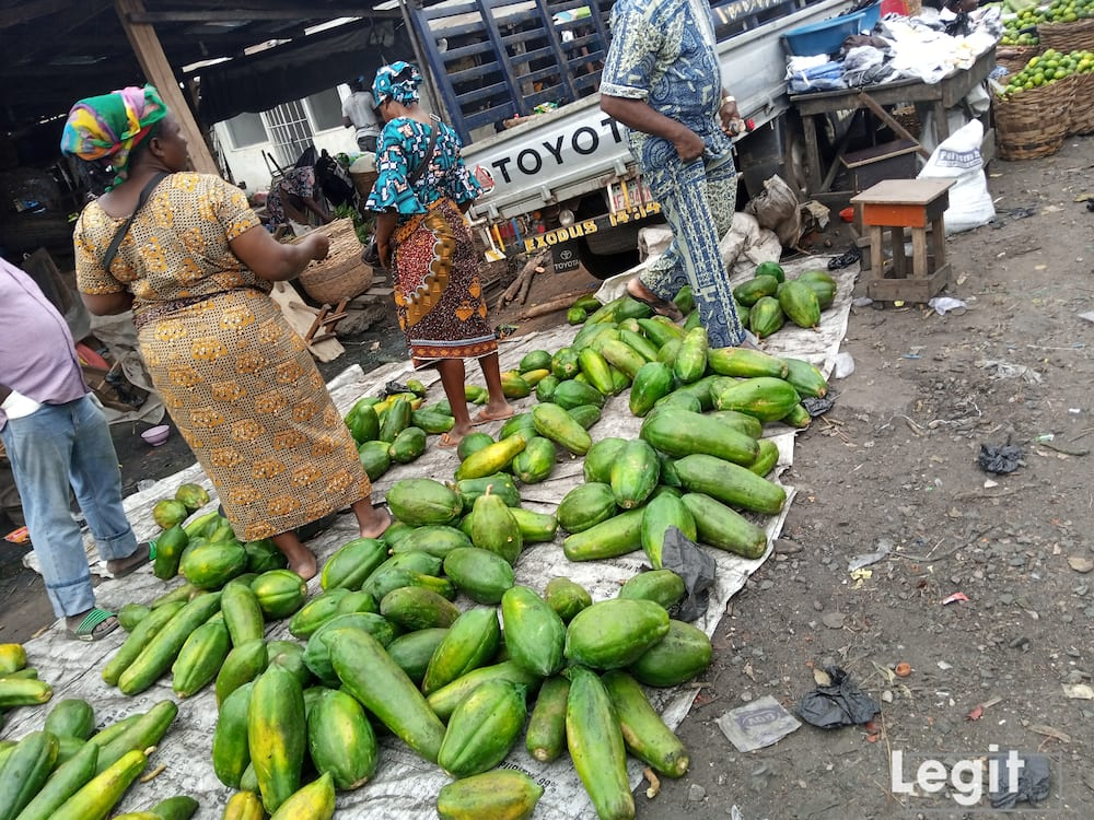 Pawpaw on display at wholesale price in Jakande market, Ketu, Lagos. Photo credit: Esther Odili