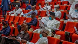 Electronic transmission of result: Full lists of APC, PDP senators who voted for, against report