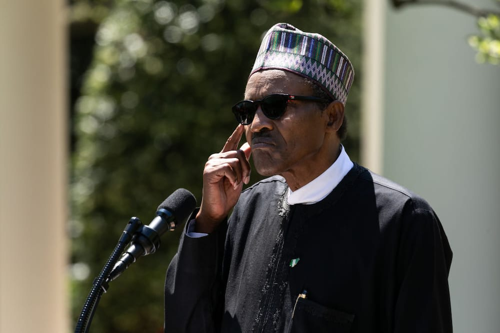 History of Safinatu Buhari