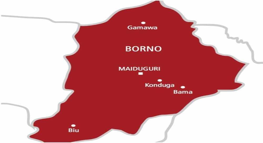 Karin 'yan Boko Haram sun mika kansu ga sojoji, suna rokon gafaran 'yan Najeriya
