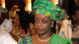 Gwamnatin Buhari ta sa gidaje da gwala-gwalan Diezani Alison-Madueke a kasuwa