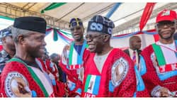 2023: APC bigwigs reveal party's biggest fear as Osinbajo, Tinubu are set to meet