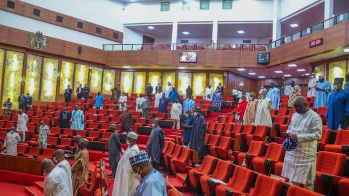 Senate plenary disrupted as heavy rain destroys section of NASS roof