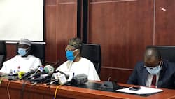 Terrorism has no boundary - Lai Mohammed wants foreign country to help fight Boko Haram