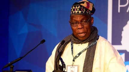 Obasanjo bombs Buhari again, says only a fool would watch the president get re-elected