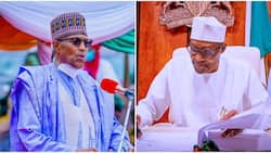 Breaking: President Buhari sacks another top FG official, announces immediate replacement