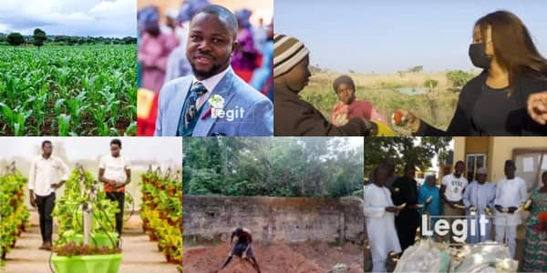 From class to farmland: How agriculture is saving Nigerian youths from massive unemployment crisis (feature)