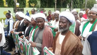 Shiites stage another massive protest in Abuja, vow to die for El-Zakzaky