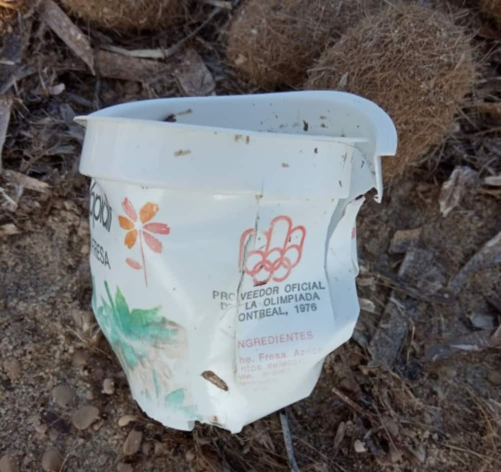 Yoghurt plastic container from 1976 Olympics found on the beach
