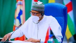 Herdsmen: You know killers in your states, take action - Buhari tells governors
