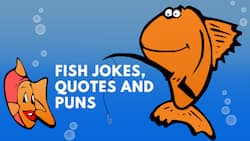 The best collection of fish jokes, puns, and quotes