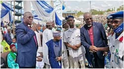 Eid-el-Maulud: Nigerian pastor leads followers to celebrate with Muslims in northern state