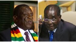What really killed Robert Mugabe - President Mnangagwa finally reveals