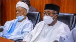 Arewa elders to FG: Bring repentant Boko Haram members to trial