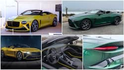5 facts about N823.5m Bentley Bacalar car that has no roof to keep rain and sun away