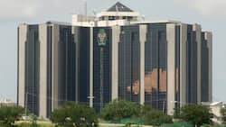 Panic as CBN set to take tougher steps on banks with high rising debt figures