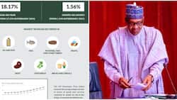 Trouble for economy as Nigeria records highest inflation rate in four years