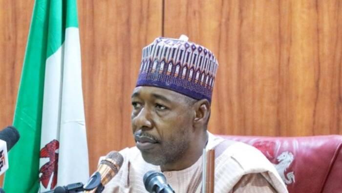 MURIC: Gwamna Zulum ya sake gina wasu coci-coci guda 9 da Boko Haram ta lalata