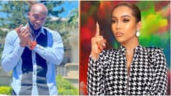 Many of una dey do worse on a lowkey: BBNaija's Tuoyo defends Maria over husband snatching scandal, fans react