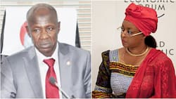Nigeria's ex-petroleum minister wanted by EFCC for fraud gets key appointment in Dominica