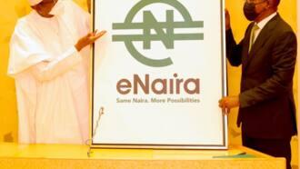 Kwana 2 bayan kaddamar da e-Naira, masu Andriod na kuka yayinda manhajar ta samu matsala a Google Store