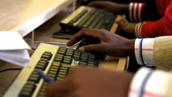 Nigeria's digital economy results in creation of nearly 500,000 jobs - Research
