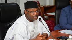 Catholic body writes INEC ahead of general elections