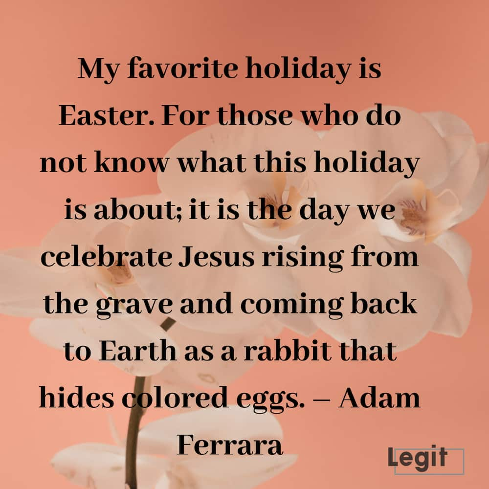 funny happy easter