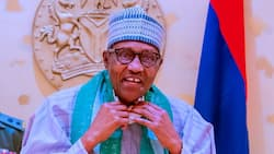 Is Buhari really Jibril of Sudan? Femi Adesina finally clears air, blasts president's critics